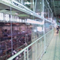 工場内透明間仕切シートのリニューアル工事3